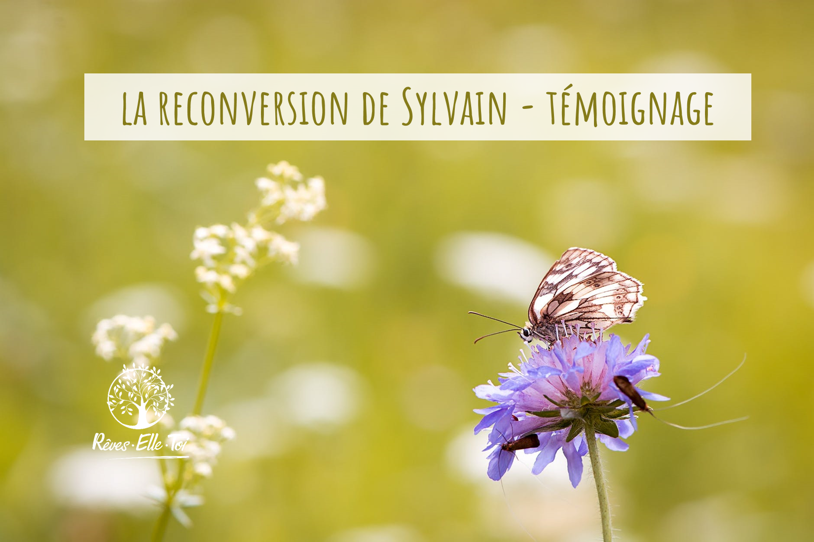 reconversion Sylvain image article